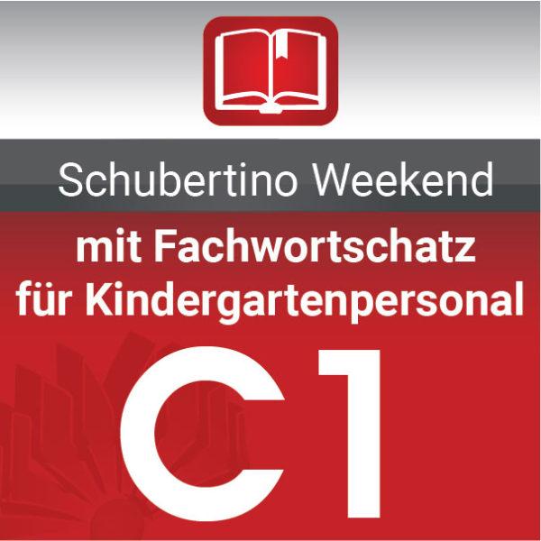 C1 Deutschkurs mit Fachwortschatz für Kindergartenpersonal Wien